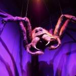 Aragog WB Harry Potter Studio Tour London