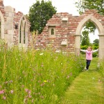 Image of Ruins & Landscape at at Capel Manors Gardens in Enfield UK