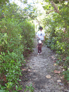 Hiking Trails at Birch Park in Fort Lauderdale