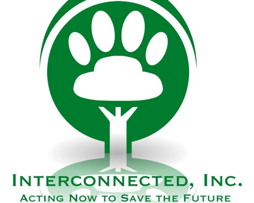 Interconnected Inc, Acting Now to Save the Future