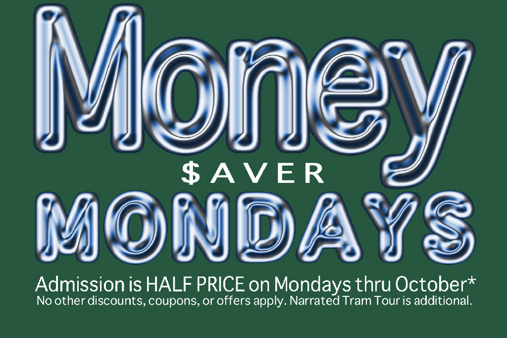 Money Saver Mondays at Flamingo Gardens