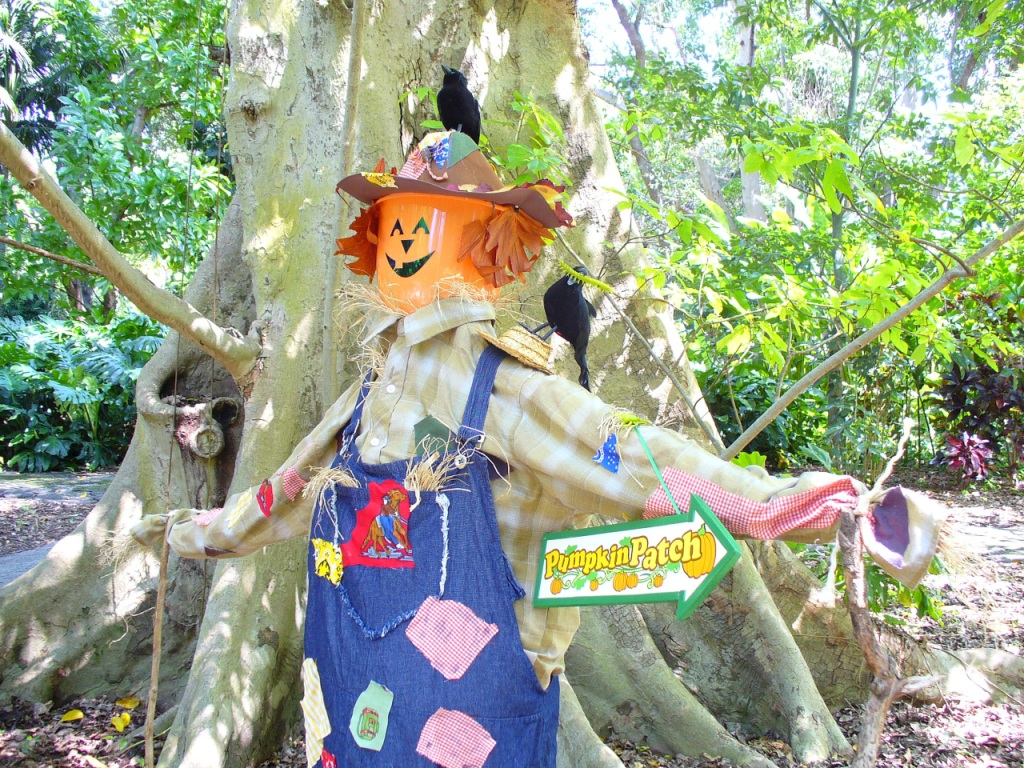 Scarecrow Contest at Flamingo Gardens