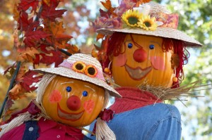 Pair of scarecrows at a Fall Festival at Flamingo Gardens