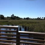 Pondhawk Nature Area