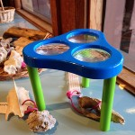 Kids Activity at Gumbo Limbo