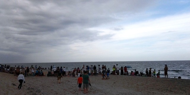 Sea Turtle Release at Spanish River Park