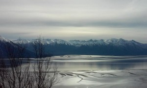 Bird Ridge Alaska by Tari Stage-Harvey