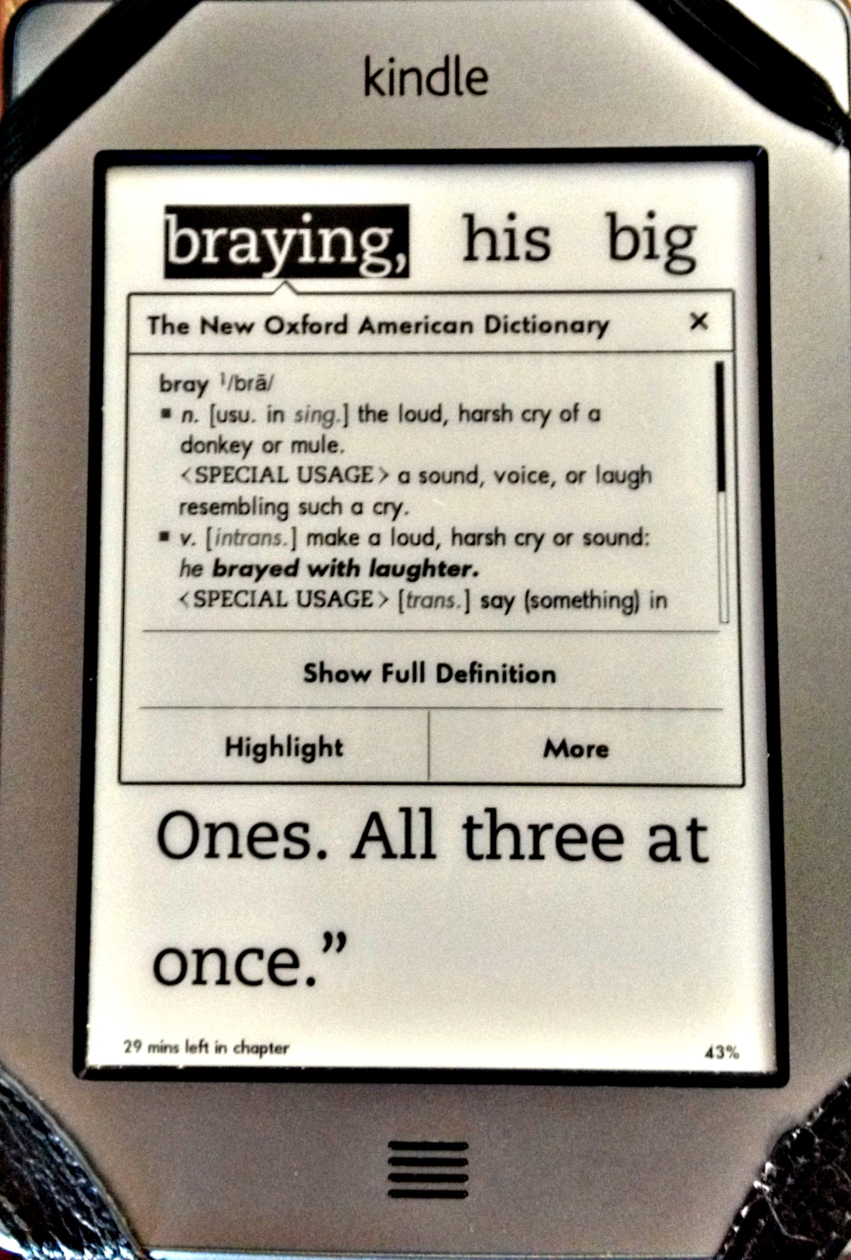 Kindledictionary  Book Young Readers