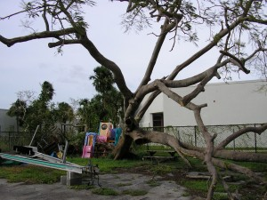 Hurricane Wilma – Fort Lauderdale by LM Burton