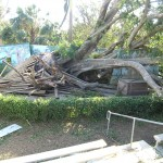 Palm Beach Zoo - Hurricane Frances
